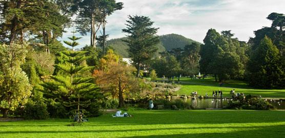 image of a park in san francisco outside of golden gate bridge